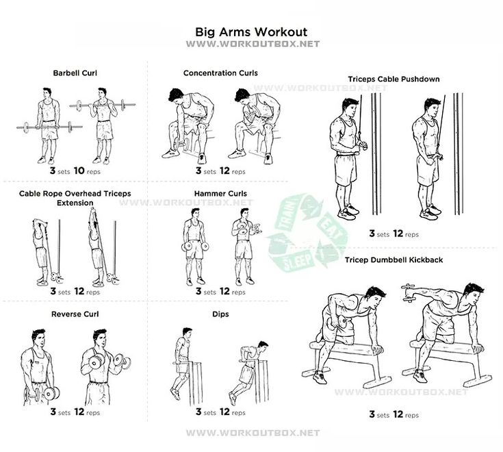 best 25  big arm workout ideas on pinterest