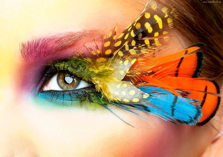 Oko, Pióra, Kolorowy, Makijaż