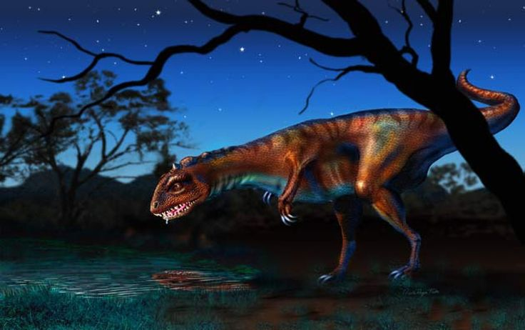 Dinosaurs ruled the Earth for 135 million years. There were many types of dinosaurs, in all shapes and sizes.