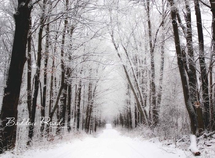 Beautiful Snow Scape in Fenelon Falls Area, Kawartha Lakes.  Thanks to Baddow Road Photography for sharing !