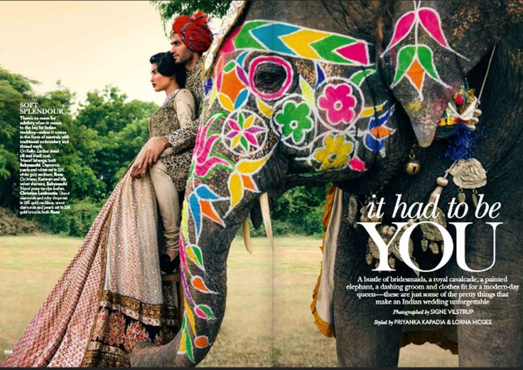 Colorful elephant, sabyasachi & beautiful groom-  what not to love about Indian wedding affaires
