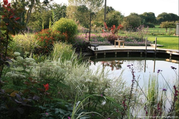 17 Best Images About Eco Swimming Ponds On Pinterest Natural Pond Pools And Water Garden
