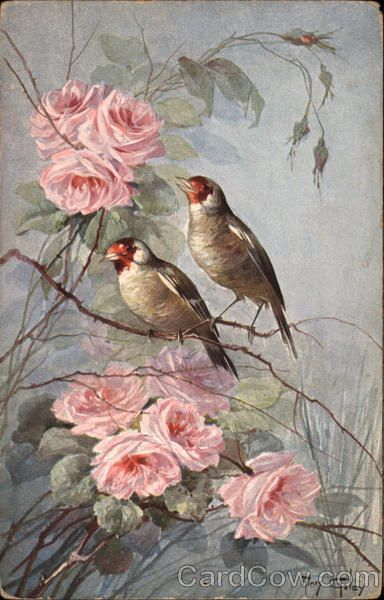 Two Birds on Branch with Pink Flowers Mary Golay