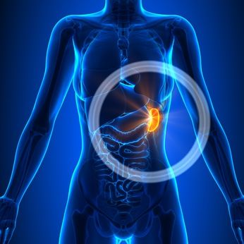 Spleen+Pain+Location,+Meaning,+Causes+and+Other+Symptoms