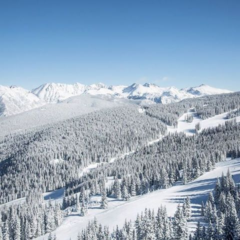 This is a picture of Vail, Colorado ski mountains. It is my favorite place in the world to be, I was born there and lived there for about a year and I wish we would never leave. I love to ski here too.