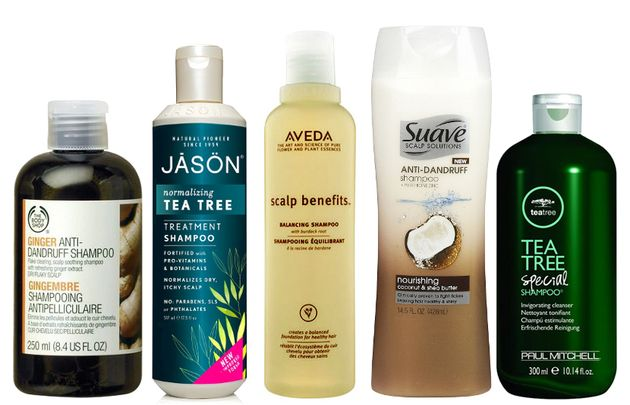 Best Anti-Dandruff Shampoos - When you're dealing with a dry and flaky scalp, you need the help of a specialized shampoo that can fight dandruff the right way to make it go away for good.