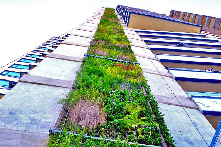 300 Foot Living Wall in Medellin, Colombia is the 2nd Tallest in the World. This Sustainable Design underlines the innovative path of the city. #building #ecological #architecture #Innovation #sustainable #medellin #City #colombia #travelandmakeadifference