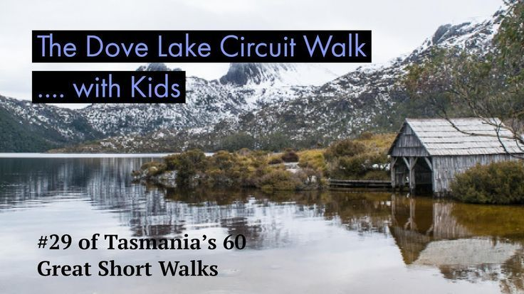 The Dove Lake Circuit with Kids...yes its definitely achievable!  Check out this clip for what to expect on the Dove Lake Circuit in Tasmania with kids!