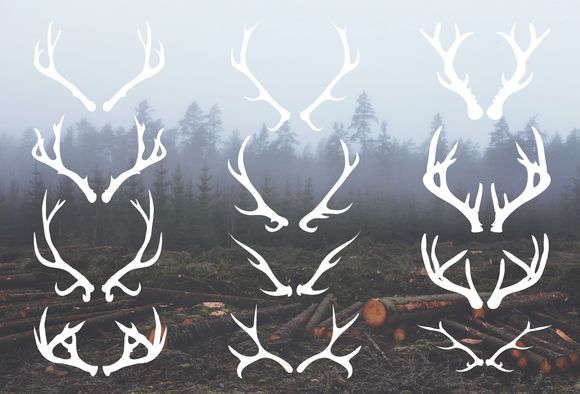 Deer Antlers - 12 Hand Drawn Vectors ~ Illustrations on Creative Market