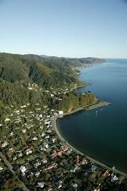 Eastern Bays, Wellington - would love to live here one day. Fortunately it's only 10 mins from where I live so I can visit often!