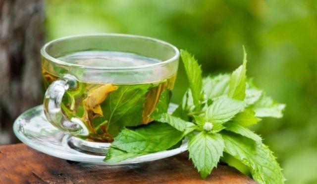 Health Benefits of Green Tea !!
