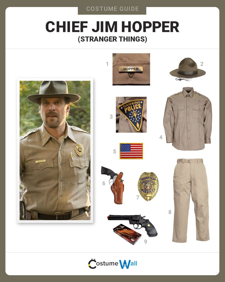 Dress in uniform as Jim Hopper, portrayed by David Harbour, the Police Chief from the Netflix series Stranger Things.