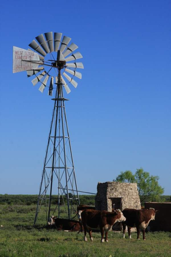 Water Pumping Windmill ~ Near Sterling City, Texas. The still-working windmill provides water for cattle and goats on this ranch in Sterling County, Texas.