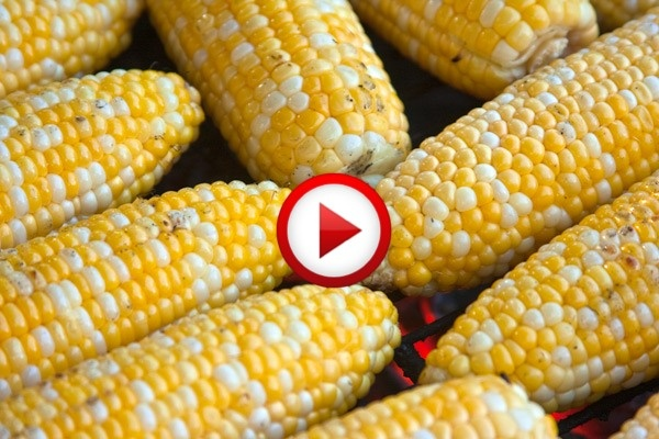The Easiest-Ever Way To Shuck Corn Video #cooking, #kitchen, #food, #pinsland, #howto, https://apps.facebook.com/yangutu