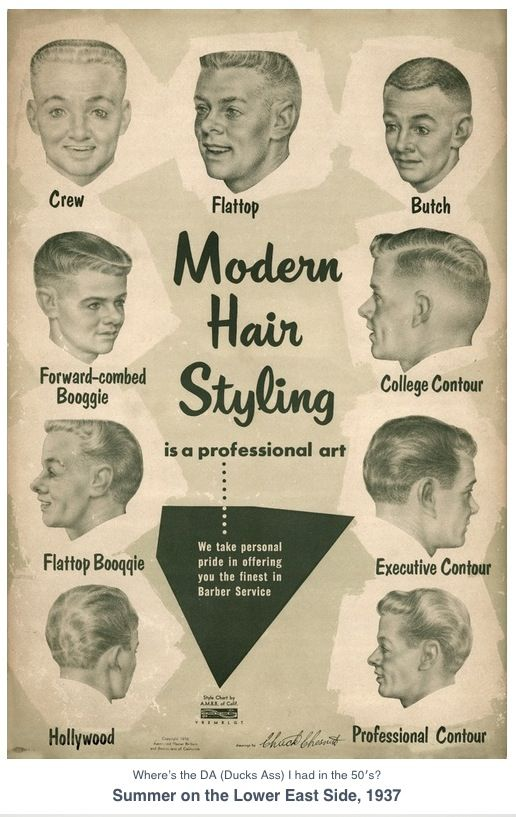 Men's Hair Style Guide 1937, Vintage Illustration.  Hair. Fade. Barber.