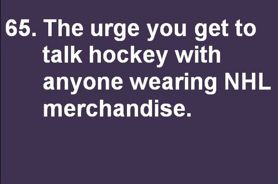 Reasons to love hockey