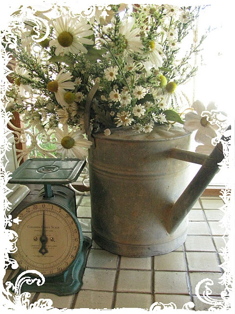 Watering can and scales