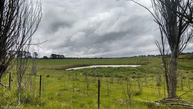 Landscape, Canberra, Australia