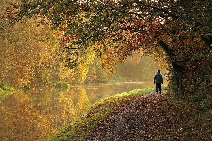 Canal side walk - By David | Flickr - Photo Sharing!
