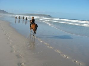 Horse Riding on Noordhoek beach, Cape Town