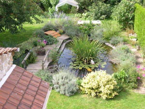 Bassin avec plantes aquatiques jonc et n nuphar jardin aquatique fontaine tang pinterest ps - Plantes filtrantes bassin rennes ...