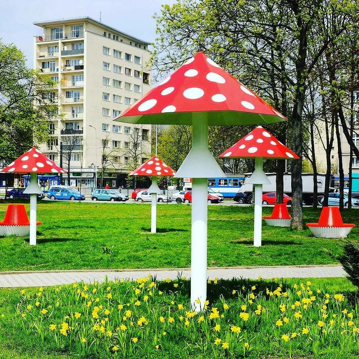 Wiosna!!!  #encek #kulturakrk #wiosna #muchomory #kolorowo #nowahuta #krakow #spring #colors #colorfull #goodvibes #mushrooms #beautiful #happy #spots