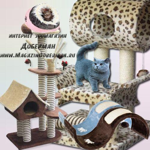 Домики для кошек в магазине «Доберман»