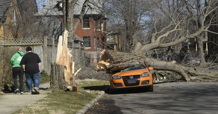 """47 photos how Michiganians deal with damage caused by high winds. Almost 1 million lost power in Michigan one week ago. The windstorm was called """"the largest combined statewide"""" #powerOutage event in #Michigan history. #iSocket monitors and report power outages and their consequences. #PowerOut? #iSocket alerts to your cell phone."""