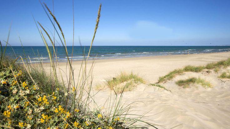 Buscan a una mujer desaparecida en una zona no vigilada de la playa de Oliva bajo bandera roja