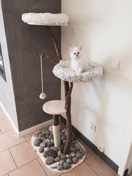 Les 25 meilleures id es de la cat gorie panier chat sur - Arbre a chat simple ...