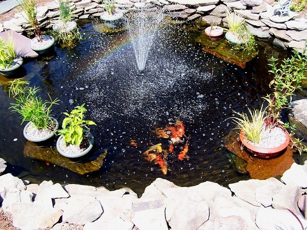 28 best Jims Pond images on Pinterest Waterfalls Backyard ponds