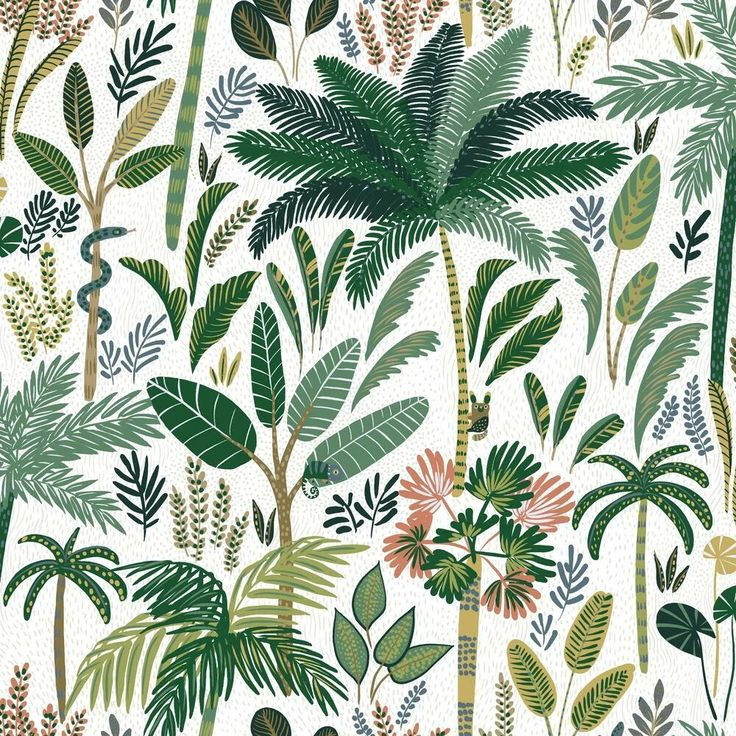 Tropical Zoo Peel And Stick Wallpaper By York Lelands Wallpaper Peel And Stick Wallpaper Wallpaper Room Transformation