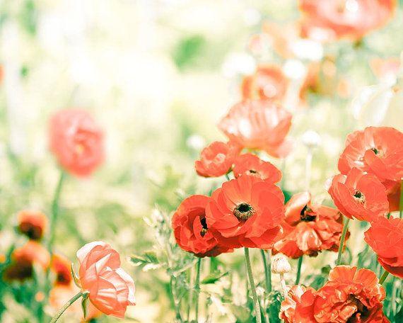 68 best Art images on Pinterest | Art floral, Flower art and Paint