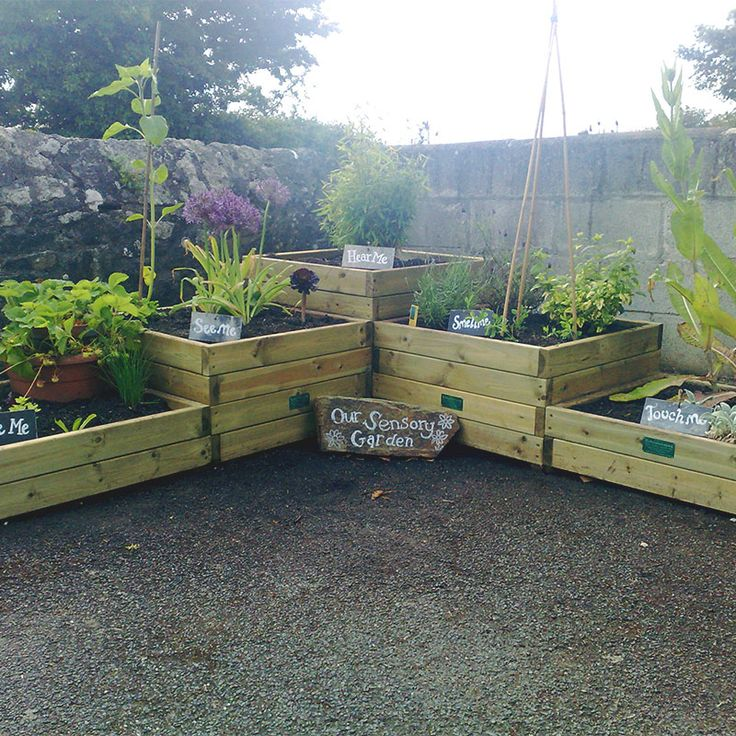 The 25+ best Sensory garden ideas on Pinterest | Garden ...