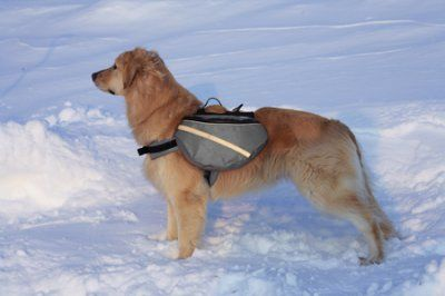 Doggles koiran reppu, harmaa - mahtitassut.fi