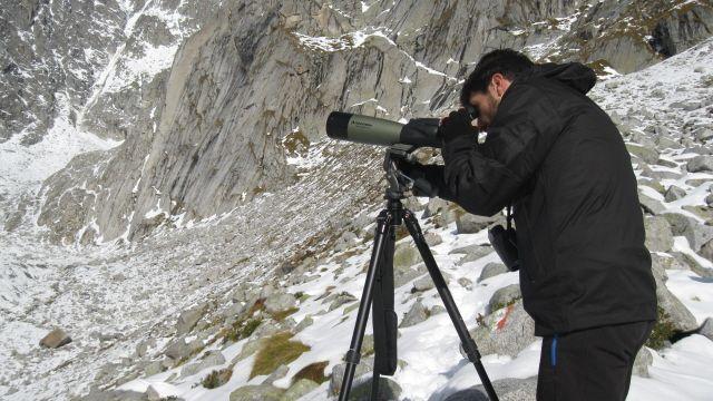 Punto di osservazione in alta Val Salarno (foto di L.Zamprogno), nell'ambito del  Censimento Stambecco Adamello 2013 (www.uomoeterritoriopronatura.it)