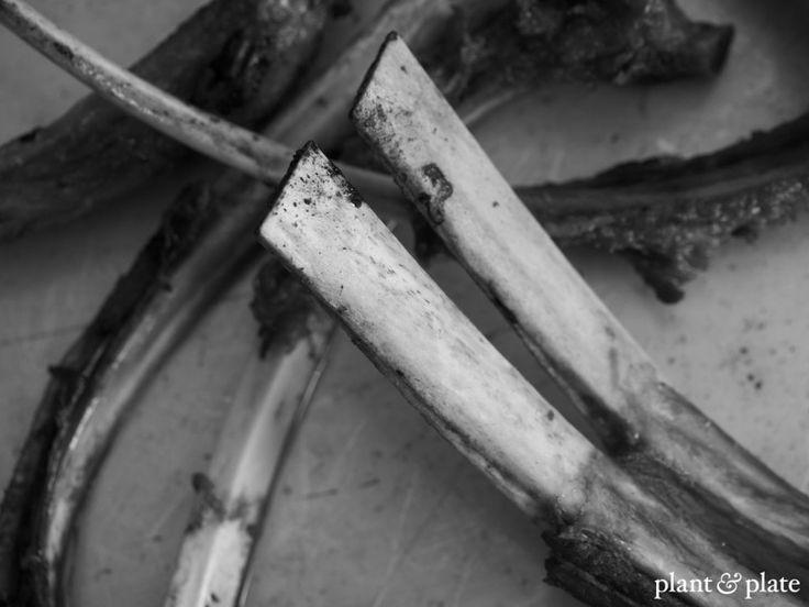 The rib bones from a roast rack of lamb, ready to make bone broth.