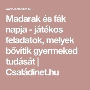 Madarak és fák napja - játékos feladatok, melyek bővítik gyermeked tudását   Családinet.hu