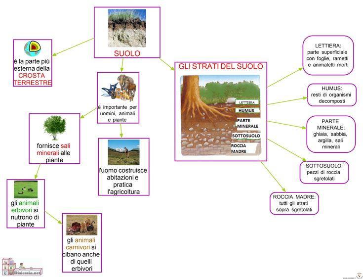 Il Suolo Sc. Elementare | AiutoDislessia.net