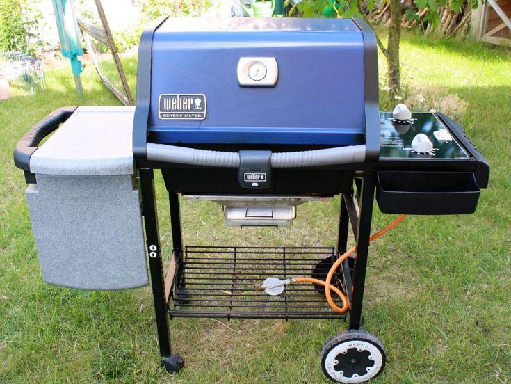 8 best two burner weber gas grills images on pinterest for Weber grill alternative