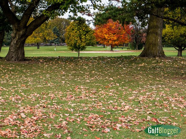 How Balls Get Lost-1020093 by GolfBlogger.Com, via Flickr