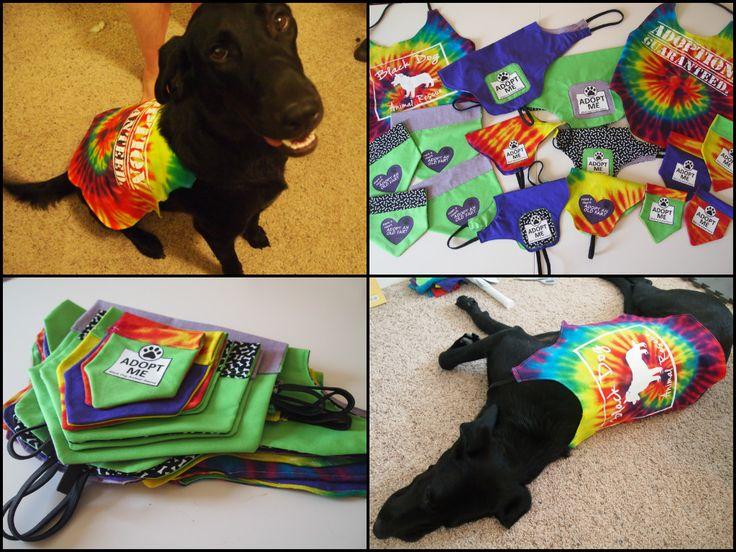 Diy adopt me vest dog adoption diy dog toys adoption