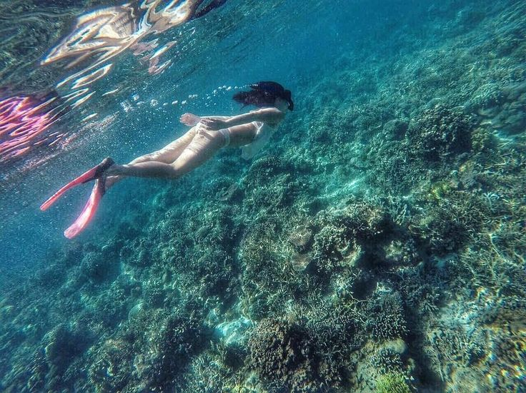 """The cure for anything is salt water  : sweat, tears or the sea."" -Isak Dinesen  Kanawa Island, Taman Nasional Komodo.  Photo by : @louise.jane . . www.tukangjalan.com . .  #tukangjalan #tukangjalantrip #tukang_jalan #explorekomodoisland #pulaukomodo #komodotrip #sailingkomodo #gililawa #gililawadarat #tamannasionalkomodo #explorekomodo #padarisland #nusatenggaratimur #pesonaalam #pesonaindonesia #wonderfulindonesia #indonesiabagus #travel #travelling #liburanseru #exploreflores #ntt"