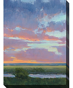 @Overstock.com - Watch the sunset every night when you hang this contemporary canvas wall art piece from Kim Coulter in your space. The spectacular colors of the gorgeous sunrise blend to create a limited-edition masterpiece that youll be proud to display.http://www.overstock.com/Home-Garden/Kim-Coulter-Passion-I-Gallery-Wrapped-Canvas-Art/2660437/product.html?CID=214117 $121.49