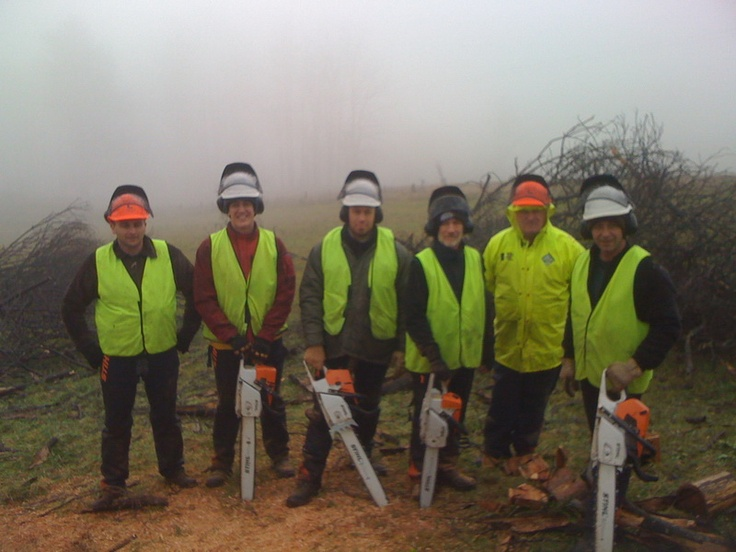 Chainsaw Course
