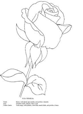 Pintura em Tecido Risco Rosas - Gráfico e esquema de cores. - Pintura Em Tecido - Venha Aprender Pintura em Tecido