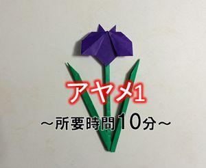 折り紙の菖蒲(あやめ)の簡単な作り方【立体・平面】Diagram