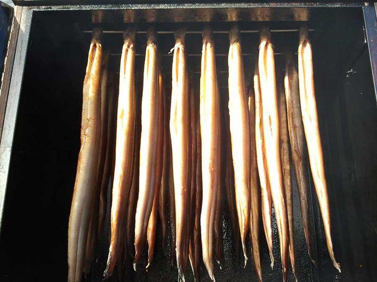 Wil jij ook zelf eens paling roken, maar je weet niet hoe dat moet? Smokey John geeft uitleg hoe je de lekkerste gerookte paling zelf maakt.