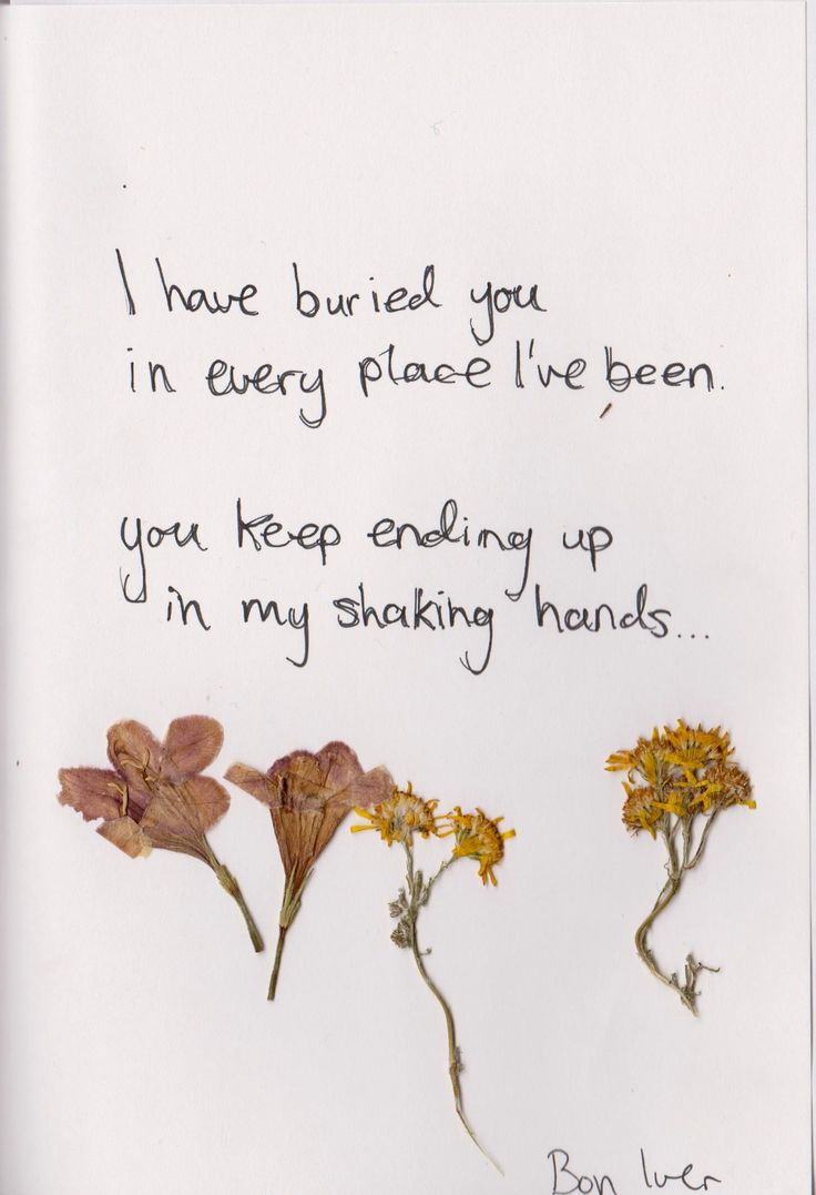I have buried you in every place I've been. You keep ending up in my shaking hands.  — Bon Iver