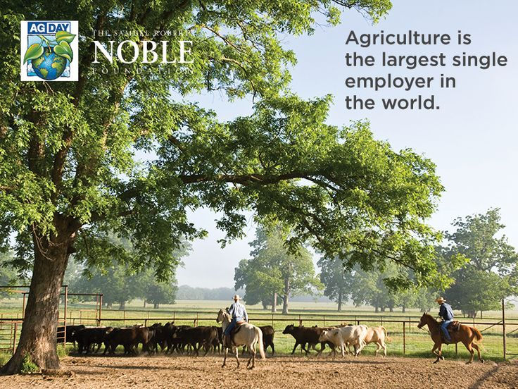 1000+ images about National Ag Day on Pinterest | Biology ...